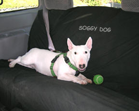 Car seat cover by Soggy Dog, made in Canada.
