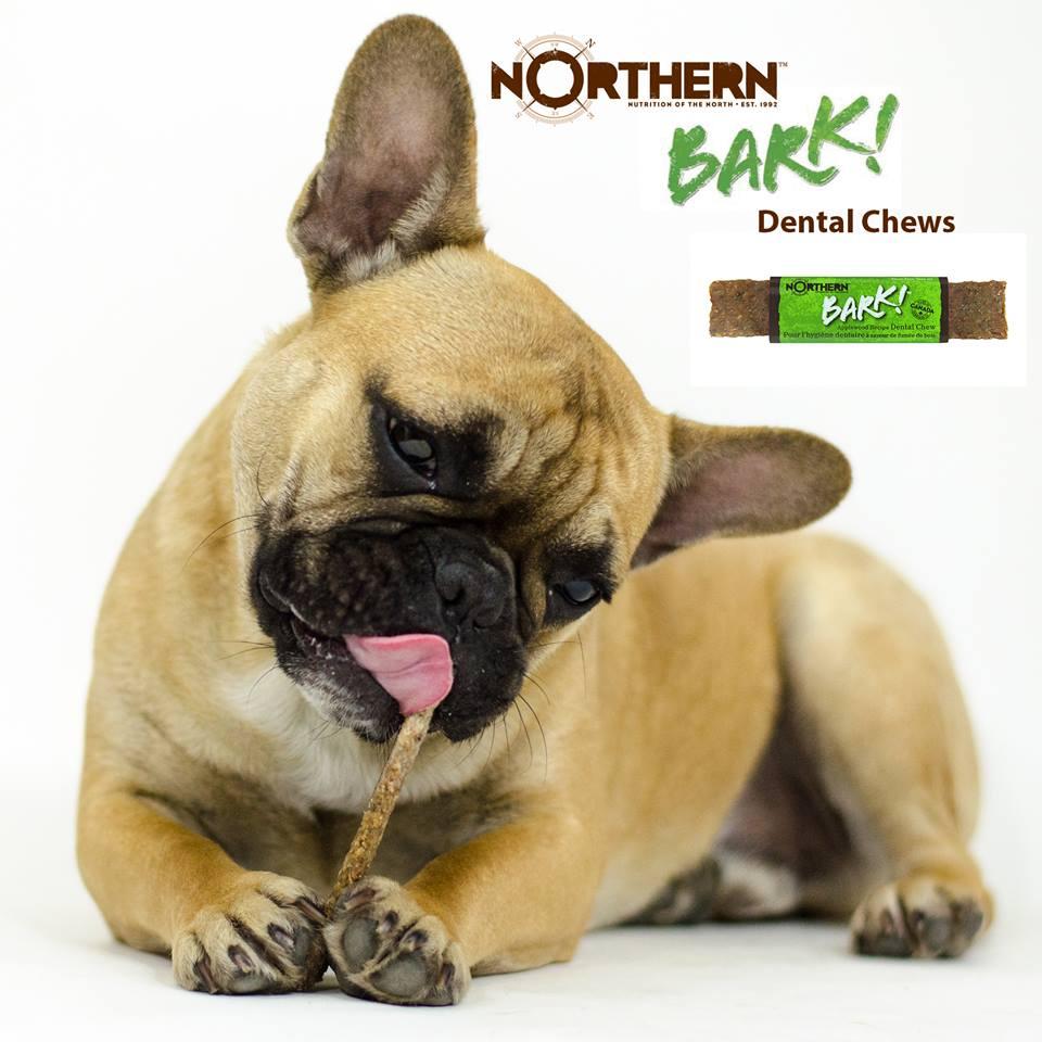 Bark Dog Chew