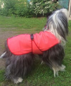 Pawsazz dog cooling coat red