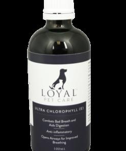 Liquid Chlorophyll for pets