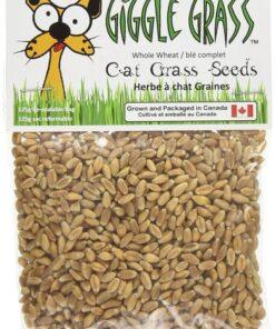 Cat grass seeds for cats